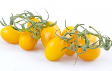 Pomodorino giallo di montagna